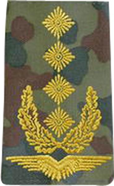 BW Rangschl. General Luftwaffe Tarn/Gold