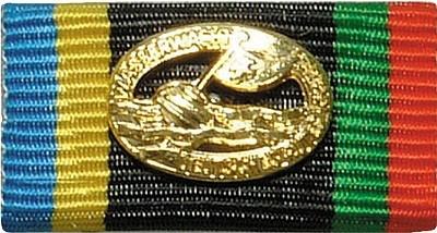 Bandschnalle Wasserwacht Gold