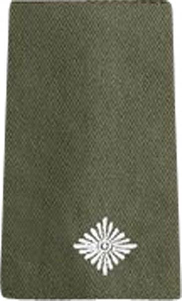 BW Rangschl. Leutnant Heer Oliv/Silber