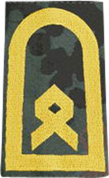 BW Rangschl. Hauptbootsmann Marine Tarn/Gold