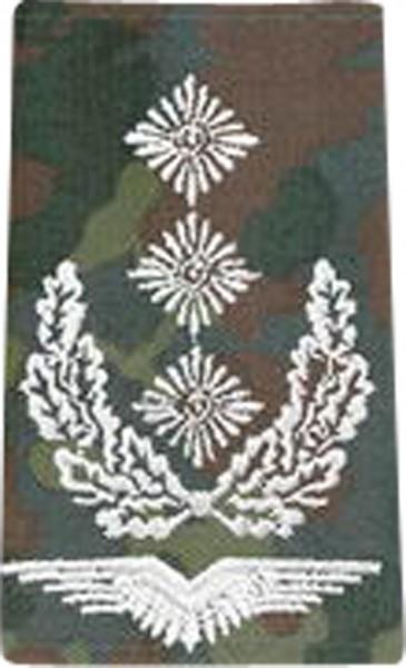 BW Rangschl. Oberst Luftwaffe Tarn/Silber