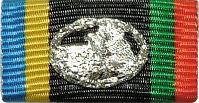 Bandschnalle DLRG Silber