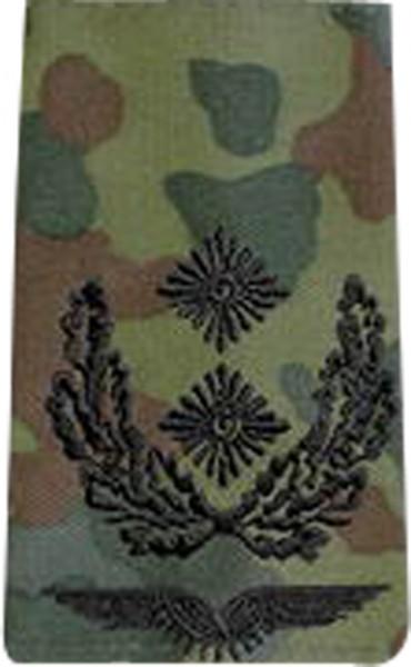 BW Rangschl. Oberstleutnant LW Tarn/Schw.