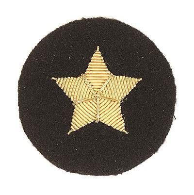 BW Marine Ärmelabzeichen Stern Handgestickt
