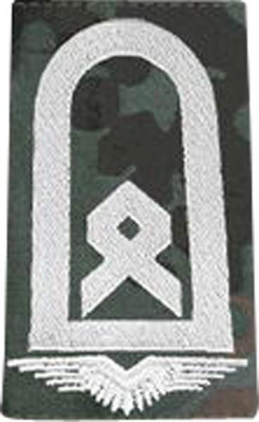 BW Rangschl. Hauptfeldwebel LW Fleck/Silber