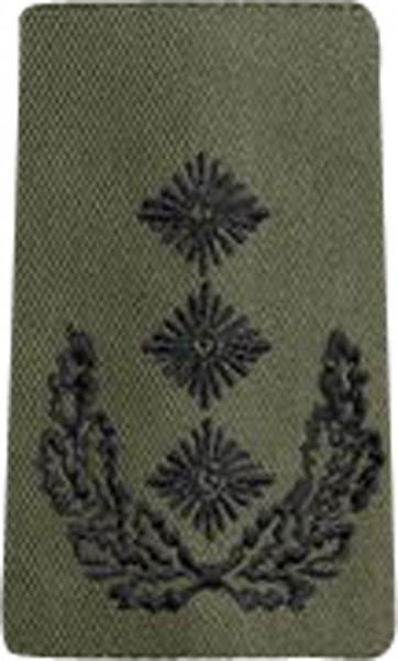 BW Rangschl. Oberst Heer Oliv/Schwarz