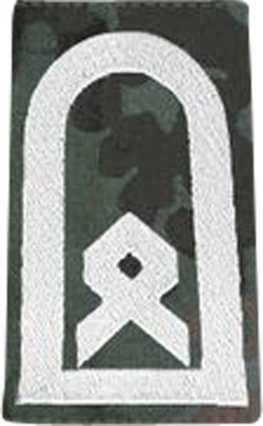 BW Rangschl. Hauptfeldwebel Tarn/Silber