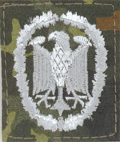 BW Leistungsabzeichen Flecktarn/Silber