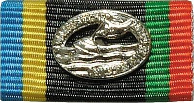 Bandschnalle Wasserwacht Silber