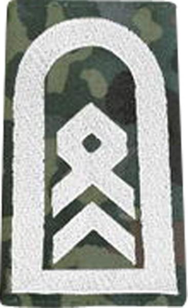 BW Rangschl. Stabsfeldwebel Tarn/Silber