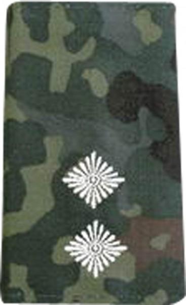 BW Rangschl. Oberleutnant Tarn/Silber Klett