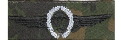 BW Tätigkeitsabz. Fallschirmjäger Tarn/Silber