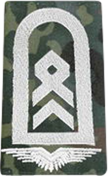 BW Rangschl. Stabsfeldwebel LW Fleck/Silber