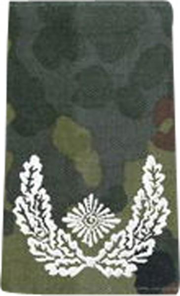 BW Rangschl. Major Tarn/Silber