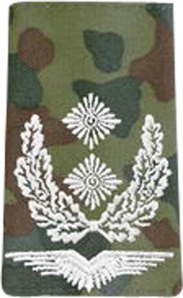 BW Rangschl. Oberstleutnant LW Tarn/Silber
