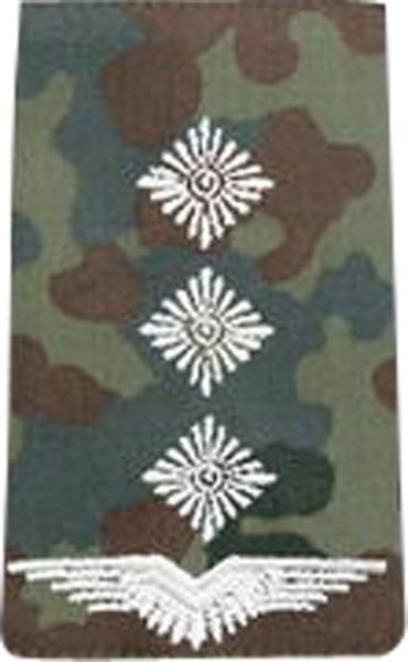 BW Rangschl. Hauptmann Luftwaffe Tarn/Silber