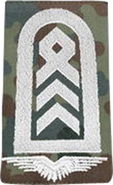 BW Rangschl. Oberstabsfeldwebel LW Fleck/Silbe