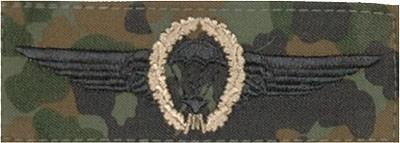 BW Tätigkeitsabz. Fallschirmjäger Tarn/Bronze