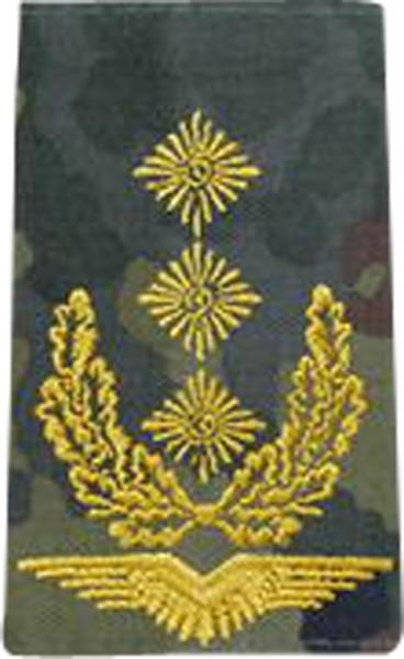 BW Rangschl. Generalleutnant LW Tarn/Gold