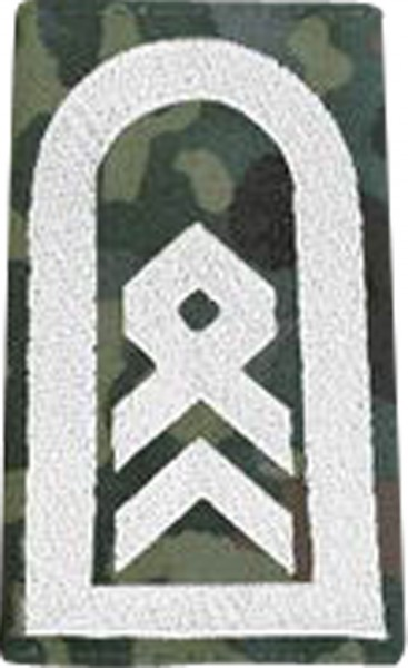 BW Rangschl. Stabsfeldwebel Tarn/Silber Klett