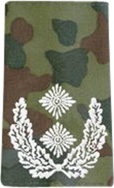 BW Rangschl. Oberstleutnant Tarn/Silber Klett