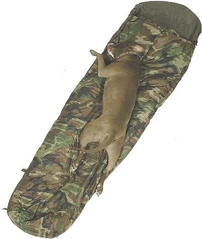 Mil-Tec Schlafsack Commando mit Packsack Woodland