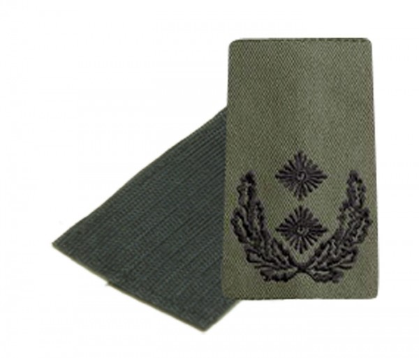 BW Rangschl. Oberstleutnant Heer Oliv/Schw. Klett
