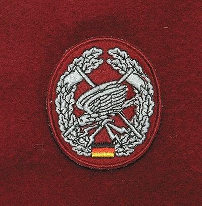Barett Abzeichen Fernspähtruppe Textil