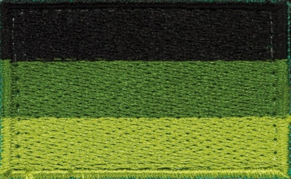 BW Hoheitsabzeichen Oliv mit Klettband - Klein