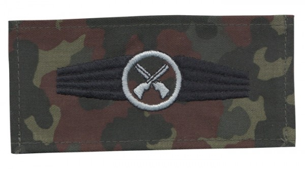 BW Tätigkeitsabz. Sicherungspersonal Tarn/Silber