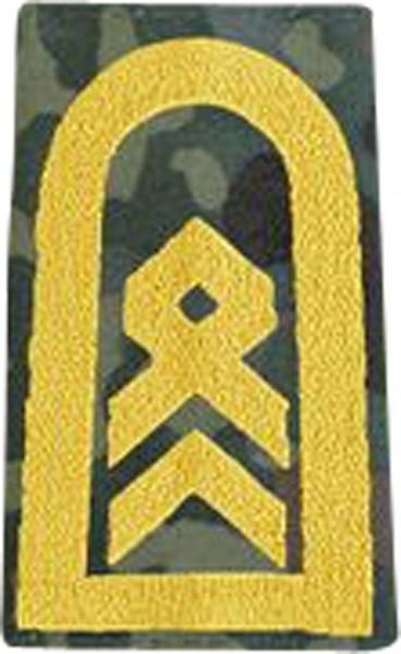 BW Rangschl. Stabsbootsmann Marine Tarn/Gold