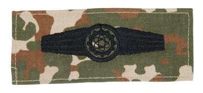 BW Tätigkeitsabz. Technisches Personal Tarn/Tropen