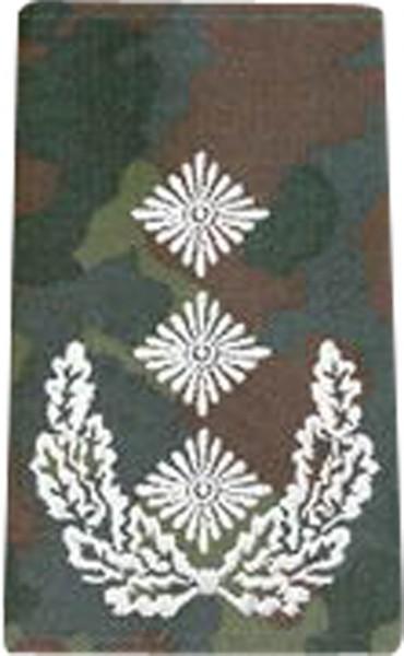 BW Rangschl. Oberst Tarn/Silber